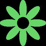 bloem-Y